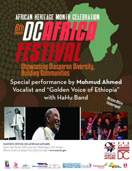 6th Annual DC African Festival Flyer